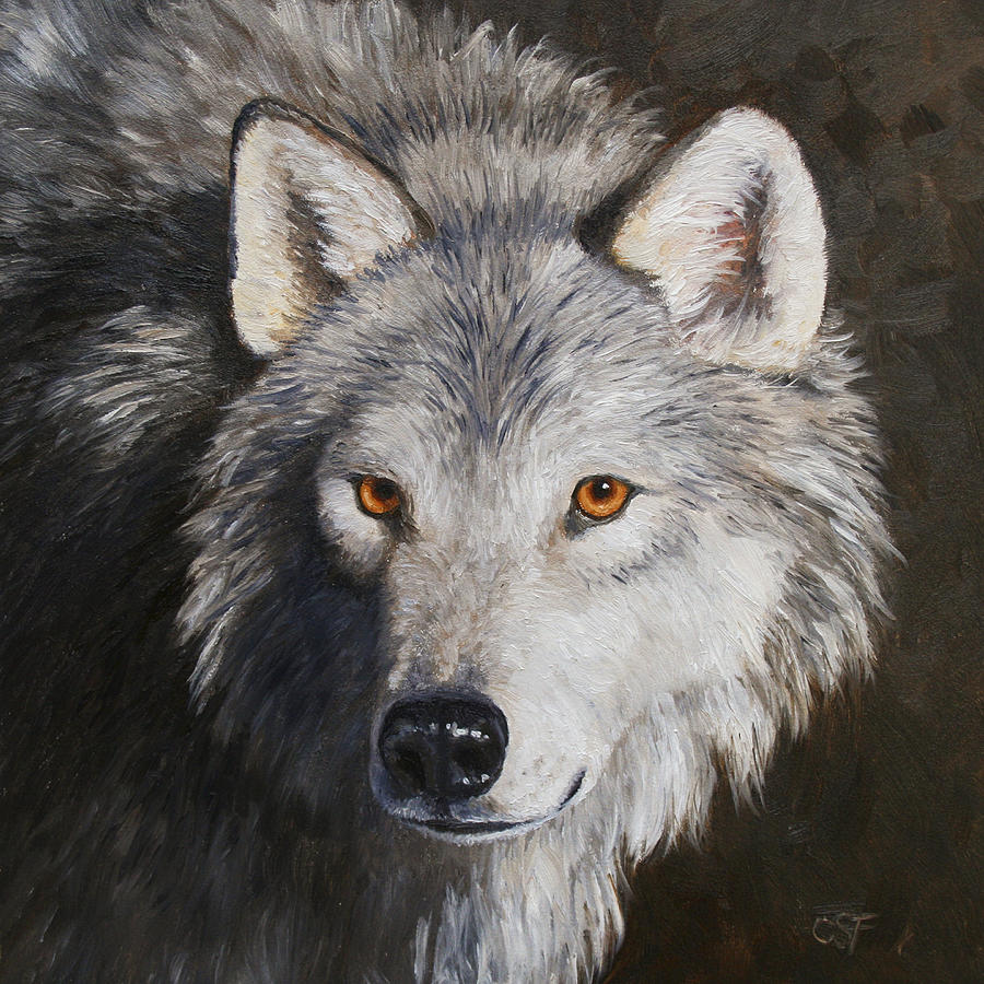 Wolf Portrait Painting By Crista Forest