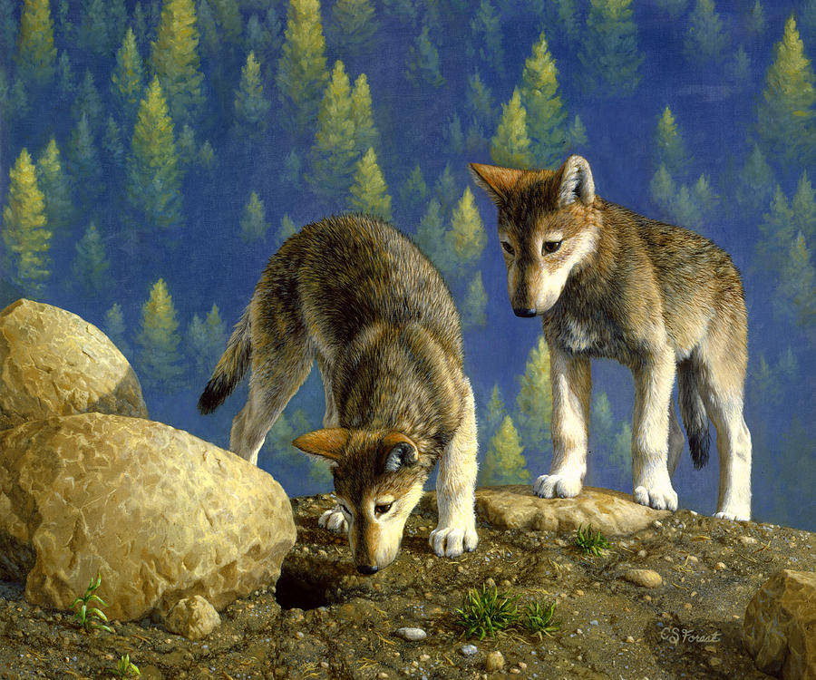 Wolf Pups Anybody Home Painting by Crista Forest