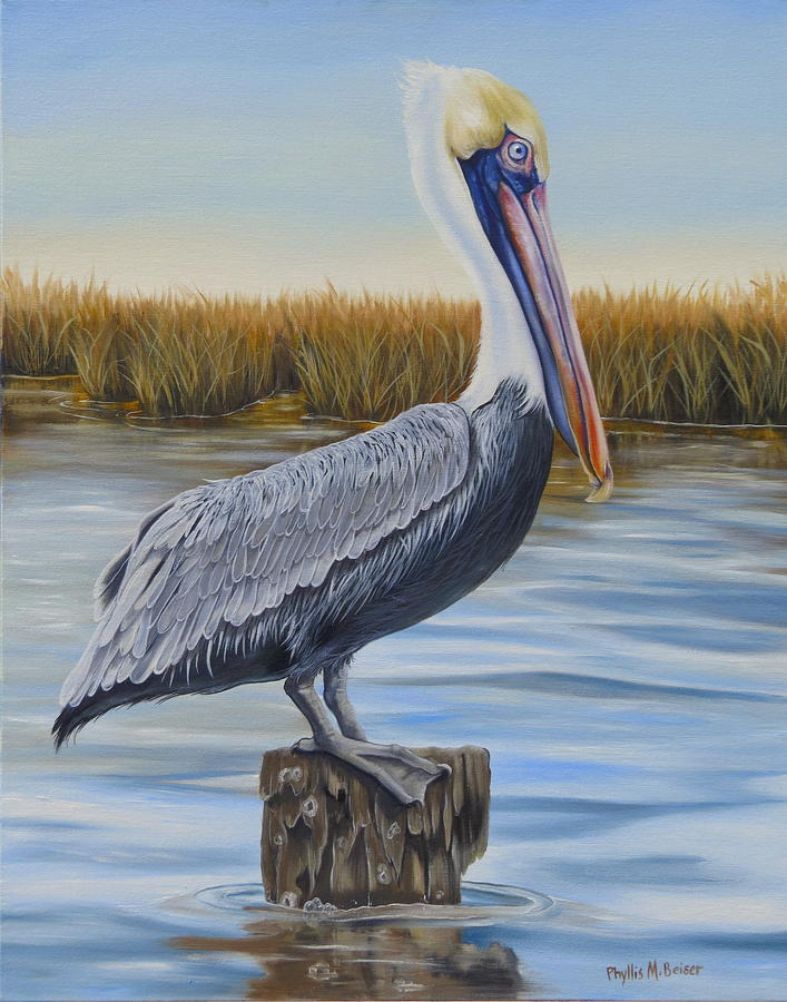Pelican Oil Paintings