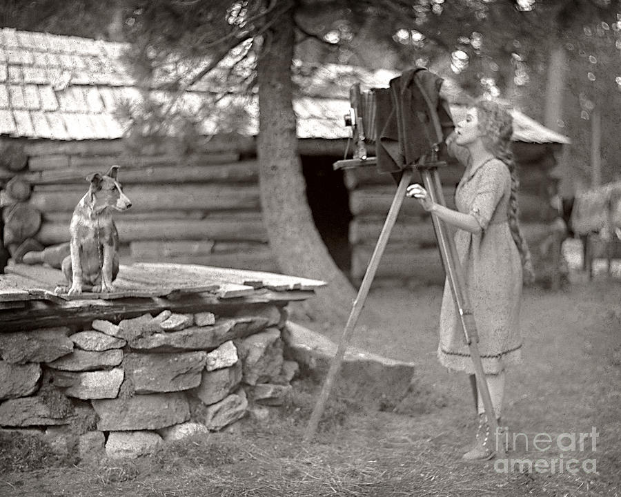 Photographer Photograph - Woman And View Camera 1910 by Martin Konopacki Restoration