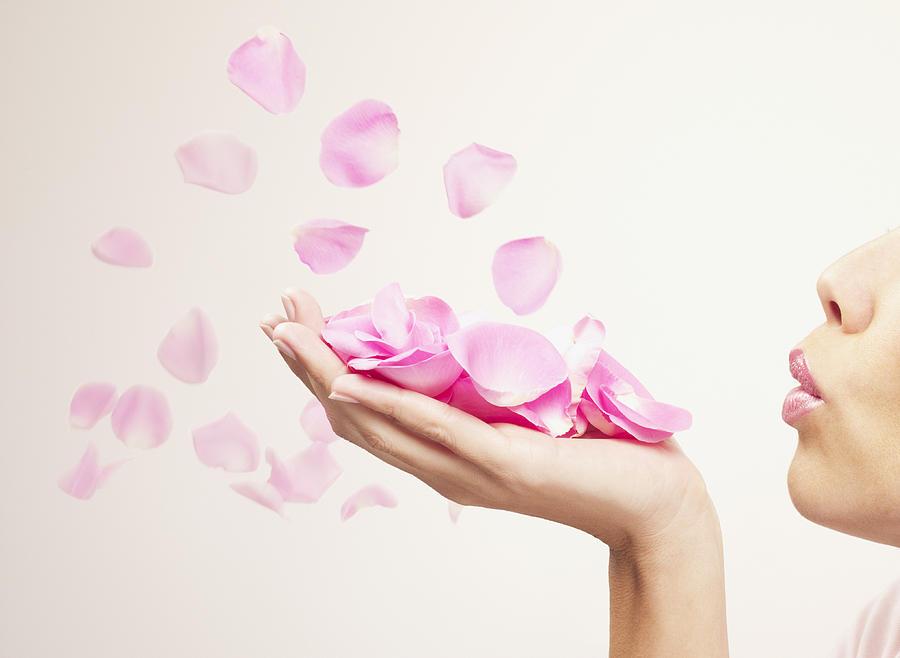 Woman blowing pink rose petals Photograph by Chris Ryan