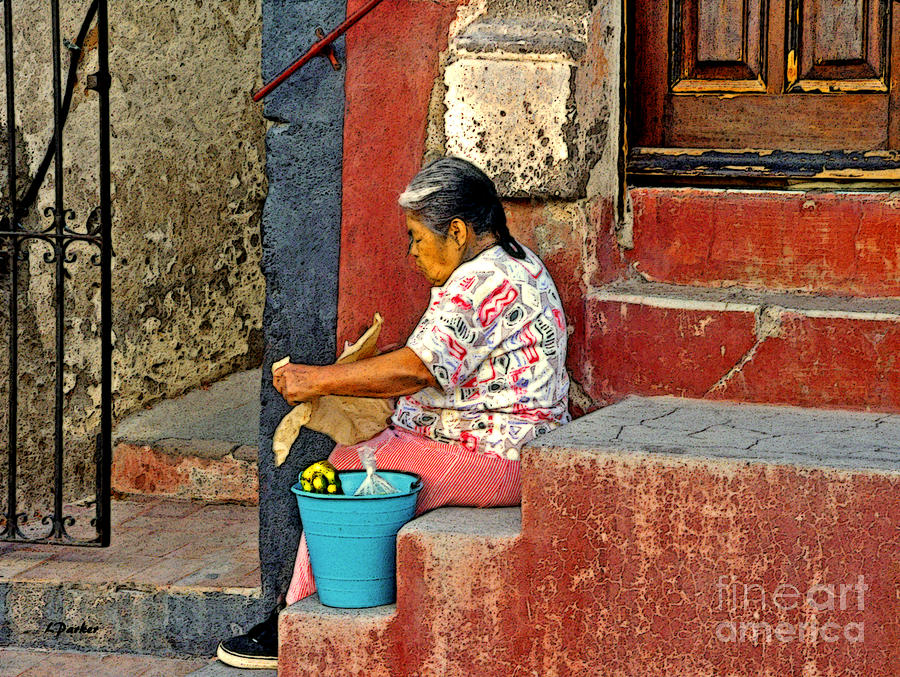 Mexico Photograph - Woman Of Colonial Mexico by Linda  Parker