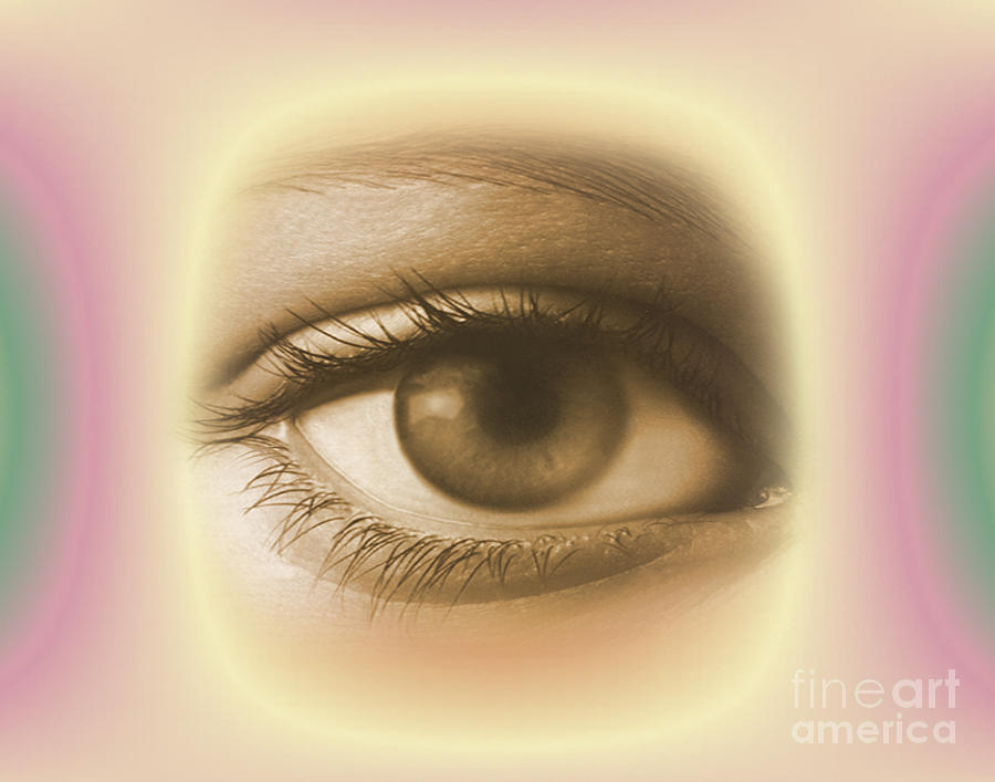 Female Eye Photograph - Womans Eye by Dennis Potokar