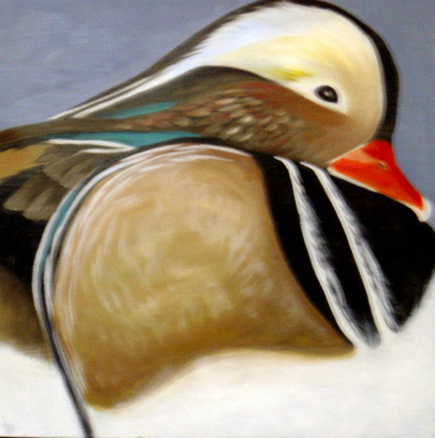 Animal Painting - Wood Duck  by Nicoletta Filarski