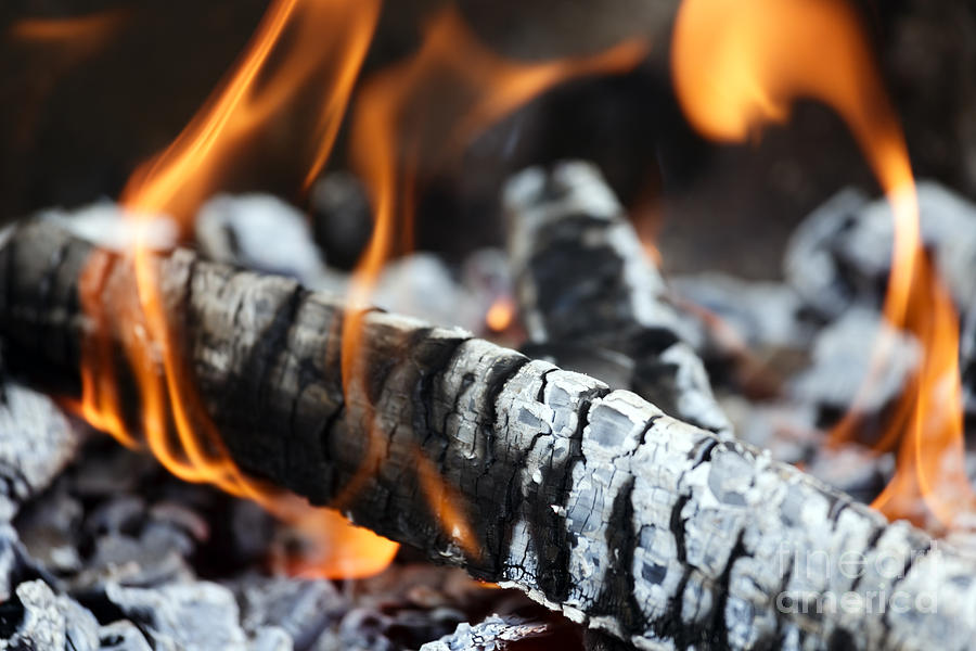 Background Photograph - Wood Fire by Rostislav Bychkov