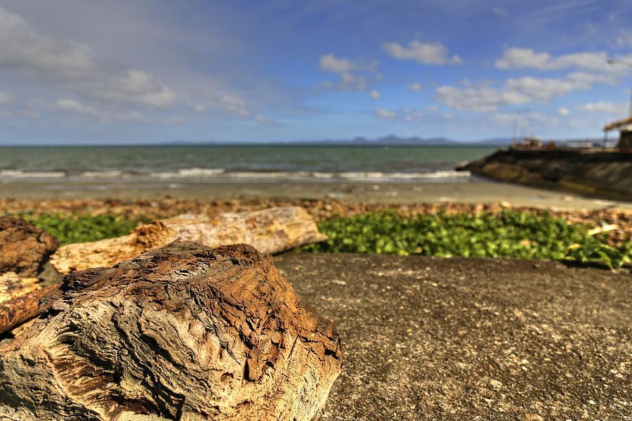 Wood Photograph - Wood by Mario Legaspi