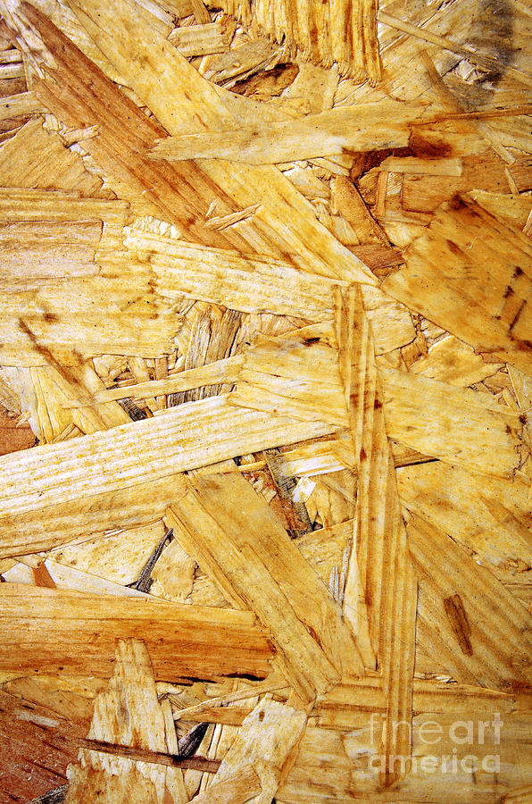 Plywood Photograph - Wood Splinters Background by Carlos Caetano