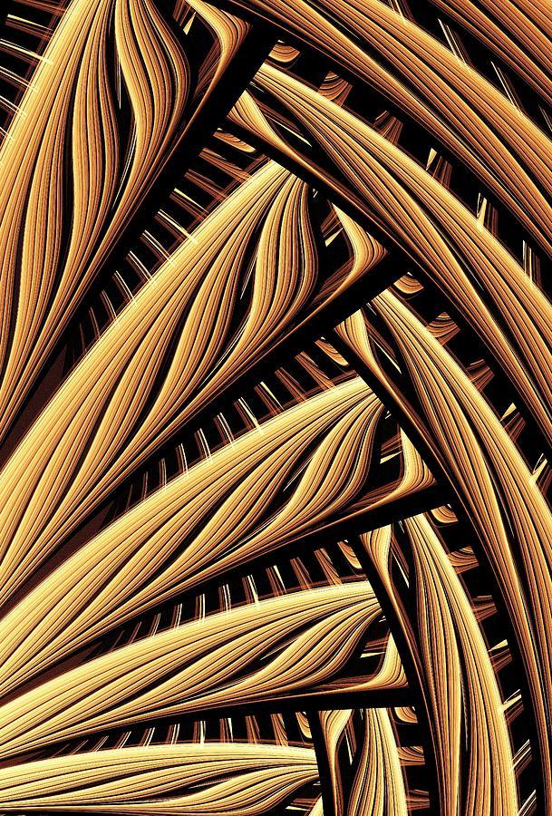 Malakhova Digital Art - Wood Weaving by Anastasiya Malakhova