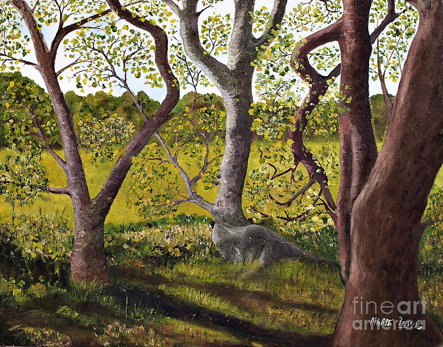 Woods Painting - Wooded Glade by Marie Lewis