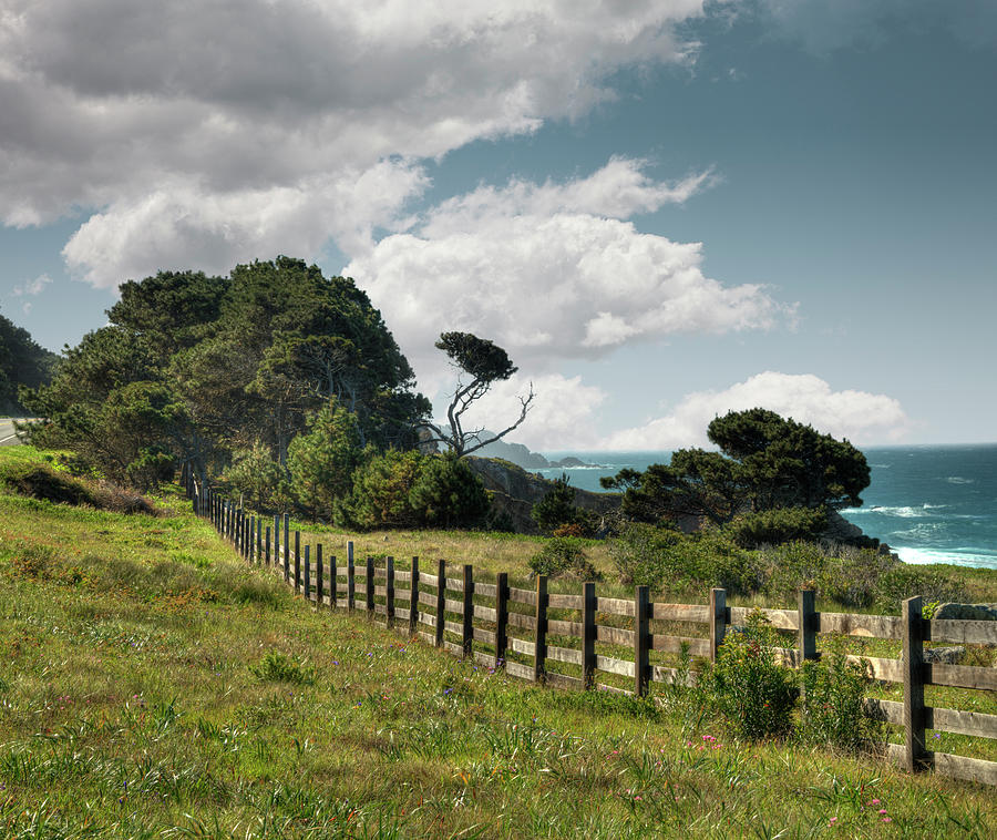 Sonoma County Photograph - Wooden Fence Along California Coast by Ed Freeman