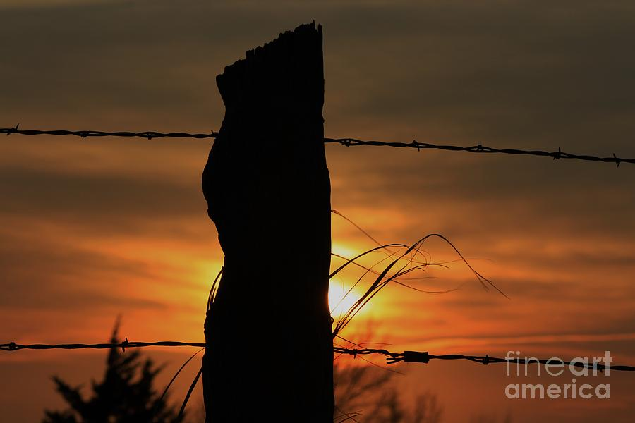 Sun Photograph - Wooden Fence Post Sunset by Robert D  Brozek