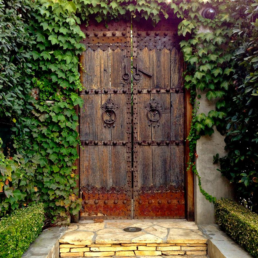 Ivy Photograph - Wooden Gate by Julie Gebhardt