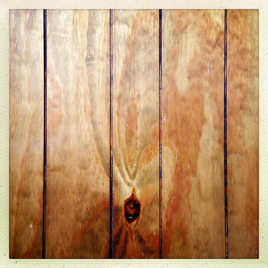 Panel Photograph - Wooden Panel by Les Cunliffe