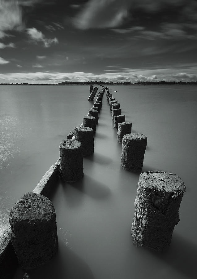 Wooden Posts Leading Out Into The River Photograph by James Ingham / Design Pics