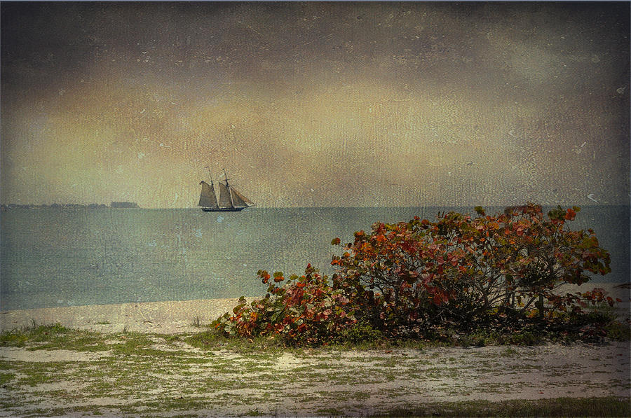 Sail Boat Photograph - Wooden Ships by Eagle  Finegan