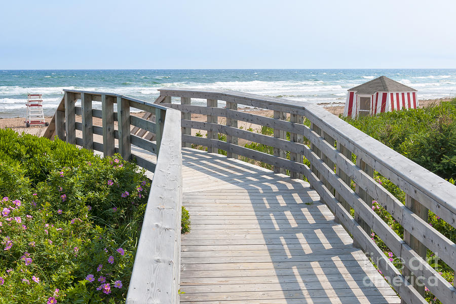 Beach Photograph - Wooden Walkway To Ocean Beach by Elena Elisseeva