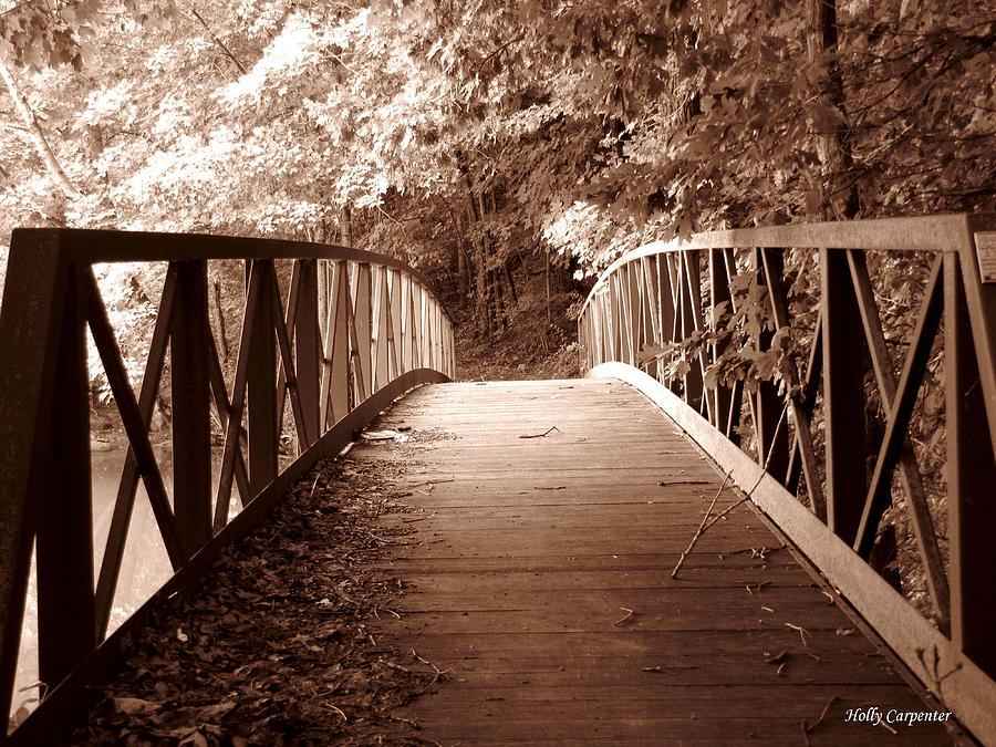 Bridge Photograph - Woodland Bridge by Holly Carpenter