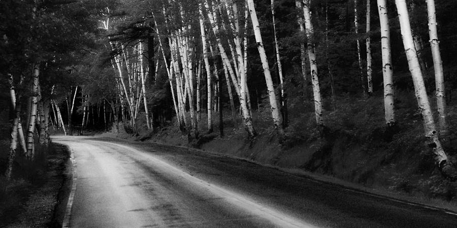 Maine Photograph - Woodland Drive by Wendell Thompson