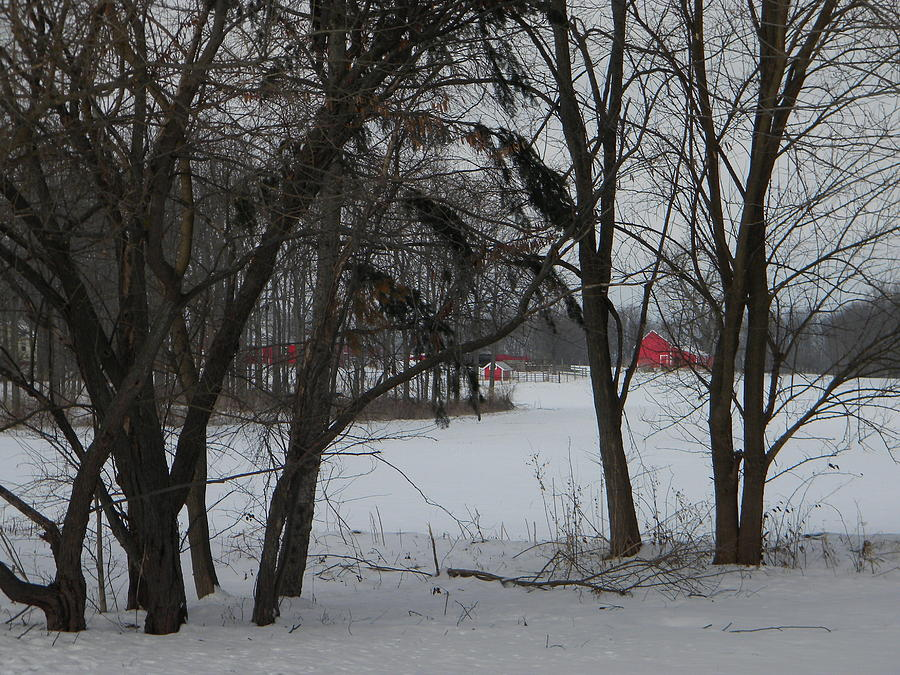 Winter Photograph - Woodland Farm in Winter by Helen ONeal
