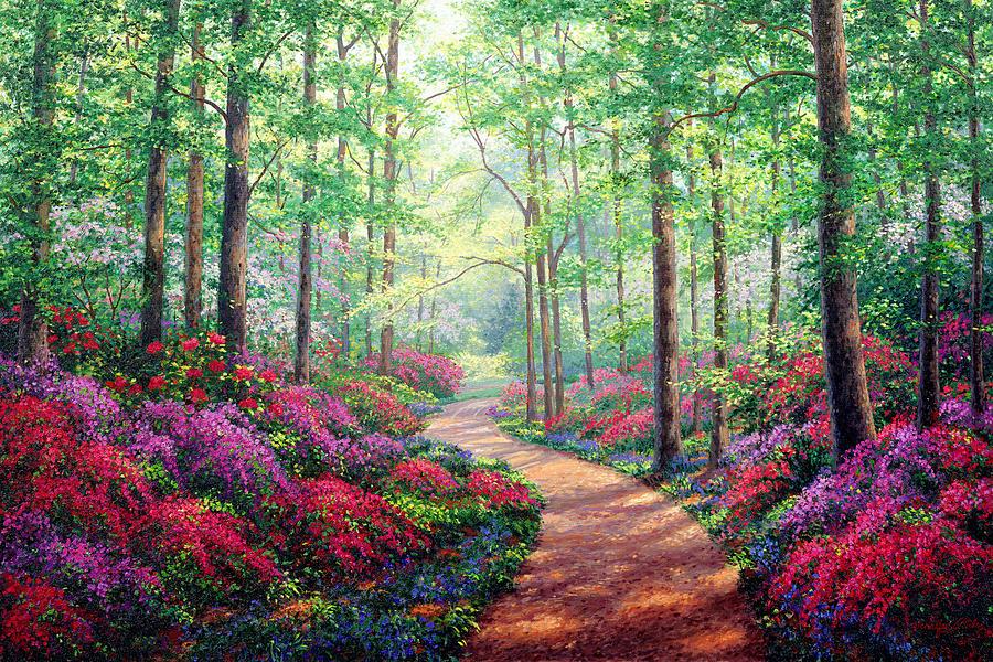 Woodland Walk by Kevin Wendy Schaefer Miles