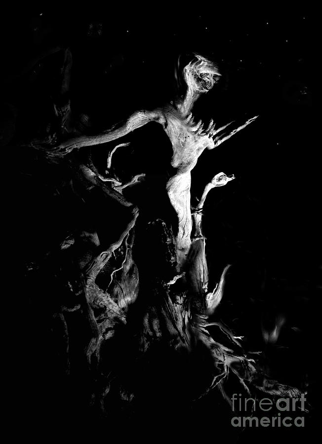 Wooden Alien Photograph - Woody Alien by Petros Yiannakas