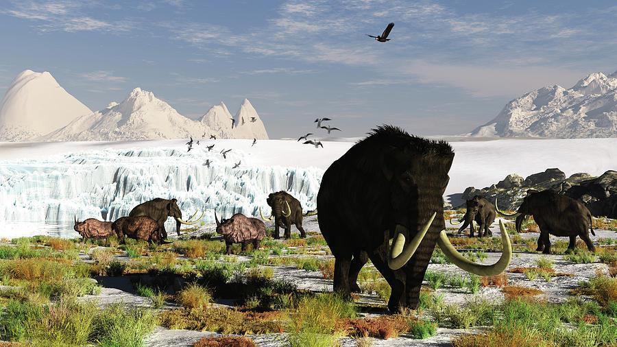 Woolly Mammoths And Woolly Rhinos In A Digital Art by Arthur Dorety/stocktrek Images