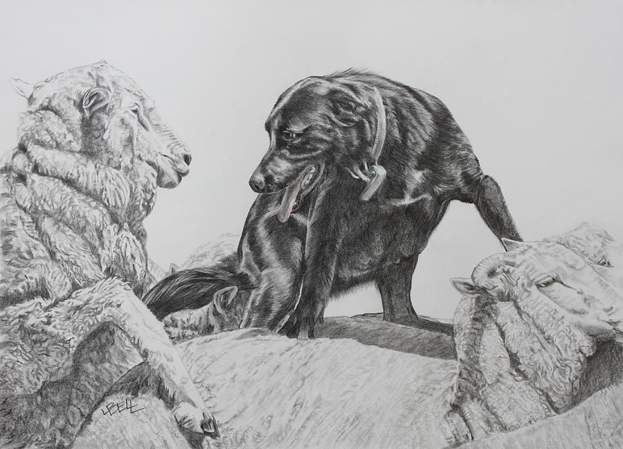 Working Dog Drawing - Working Mother II by Leonie Bell