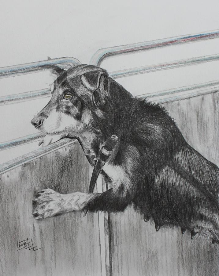 Dog Drawing - Working Mother by Leonie Bell