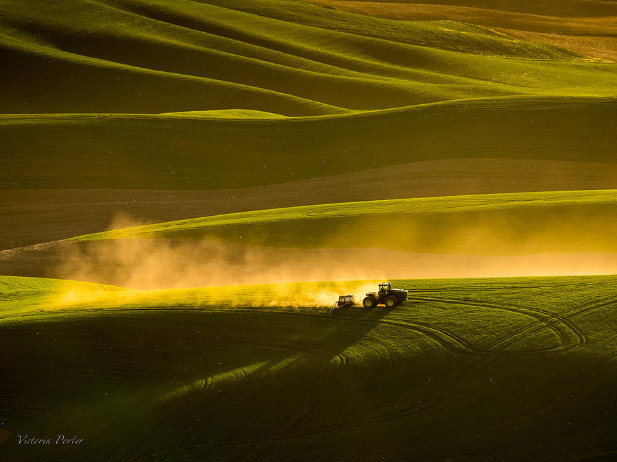 Working the fields in the Palouse by Victoria Porter
