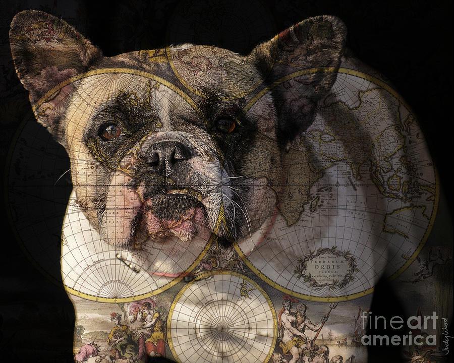 Dog Digital Art - World Domination by Judy Wood