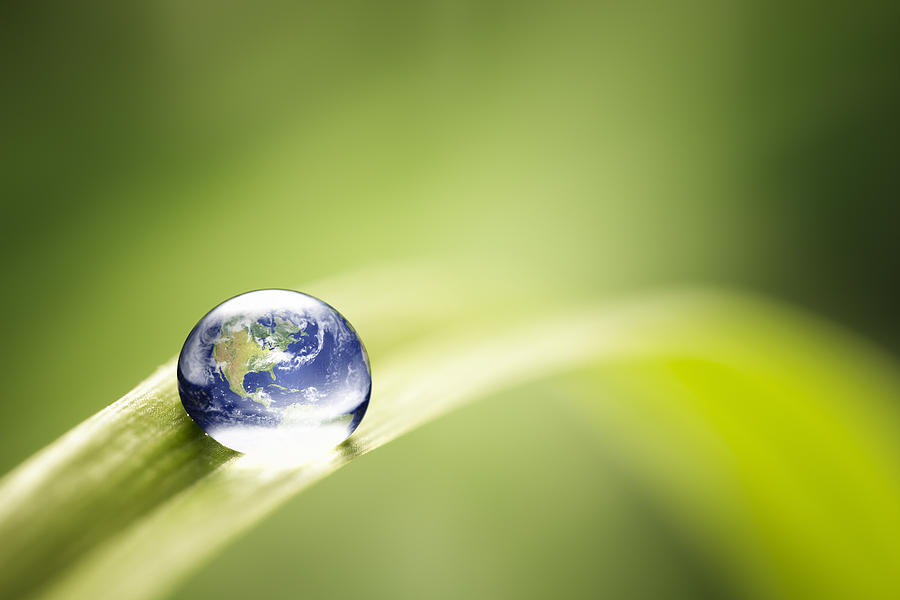World in a drop - Nature Environment Green Water Earth Photograph by ThomasVogel