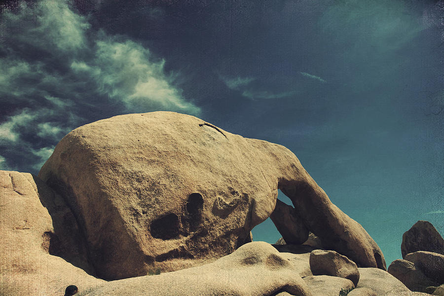 Joshua Tree National Park Photograph - Worlds Away by Laurie Search