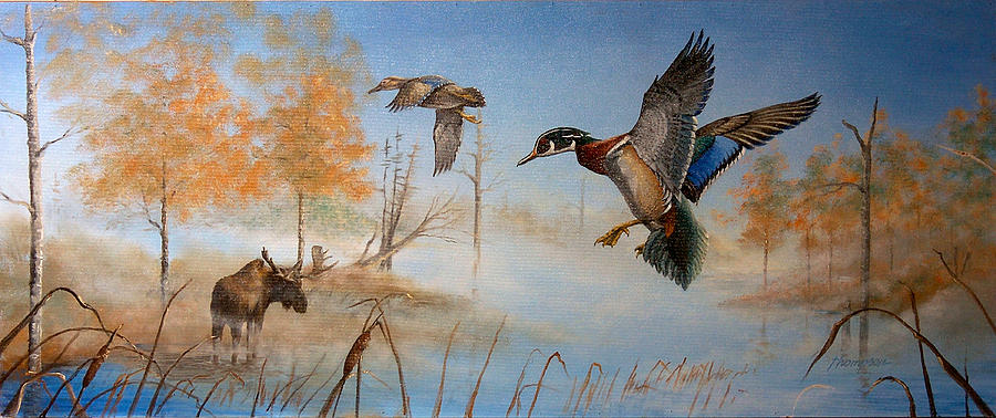Ducks Painting - Would Duck by Whitey Thompson