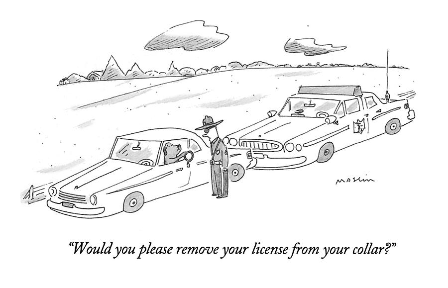 Would You Please Remove Your License Drawing by Michael Maslin