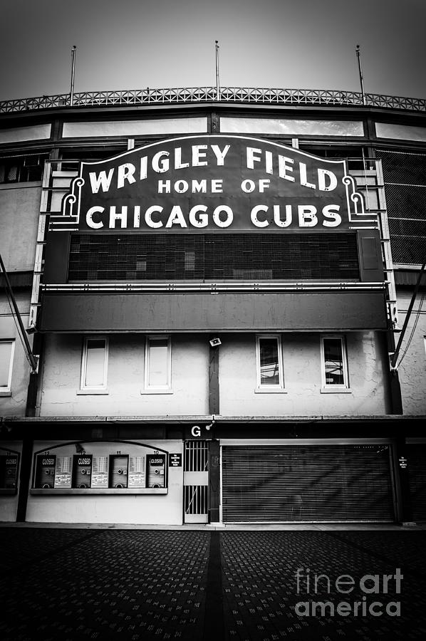 America Photograph - Wrigley Field Chicago Cubs Sign In Black And White by Paul Velgos