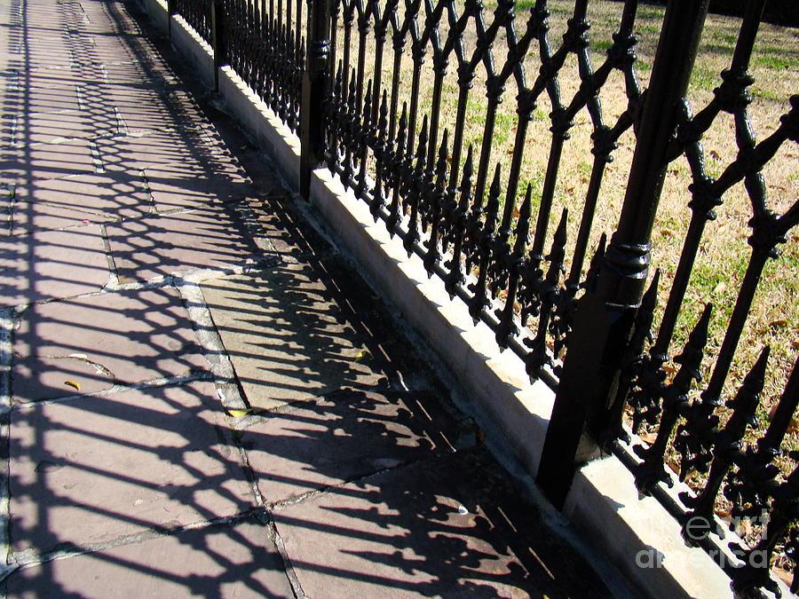 Still Life Photograph - Wrought Iron Fence by Eva Kato