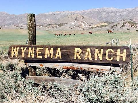Wynema Ranch Sign Photograph by Wynema Ranch