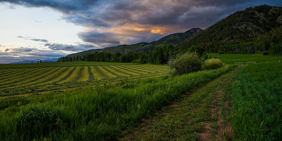 Star Valley Photograph - Wyoming Pastures by Chad Dutson