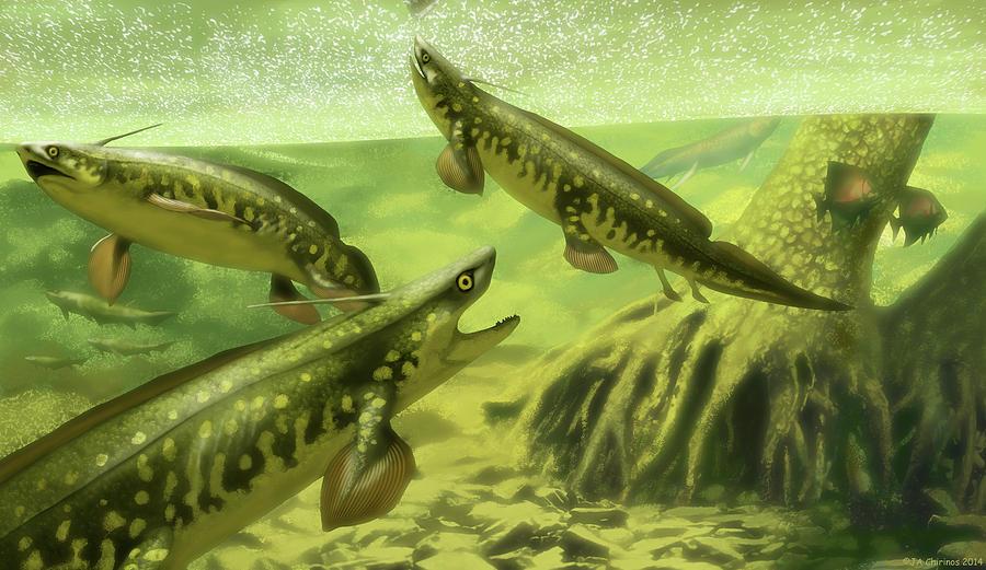 Xenacanthus Decheni Prehistoric Sharks Photograph by Jaime Chirinos