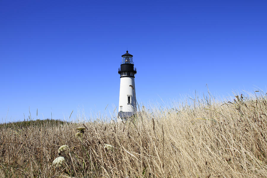 Yaquina Head Lighthouse Photograph - Yaquina Head Lighthouse by David Gn