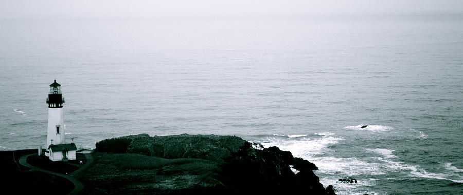 Black Photograph - Yaquina Shores by Sheldon Blackwell
