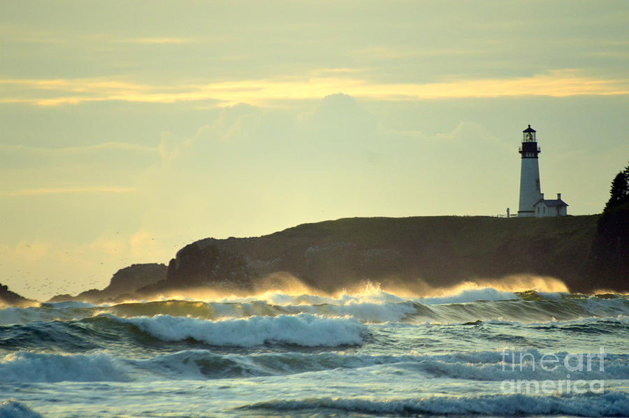 Yaquina Head Photograph - Yaquinas Rolling Waves by Sheldon Blackwell
