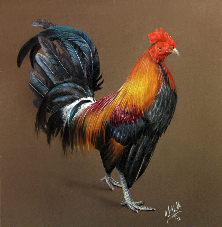 Bird Painting - Yard Boss by John F Willis