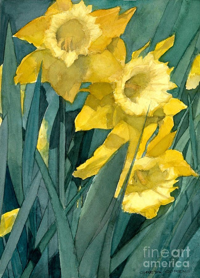Watercolor Painting of Blooming Yellow Daffodils by Greta Corens