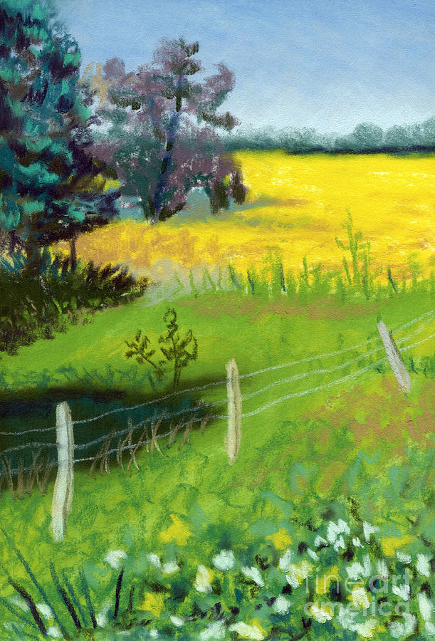 Oklahoma Pastel - Yellow Field by Tanya Provines