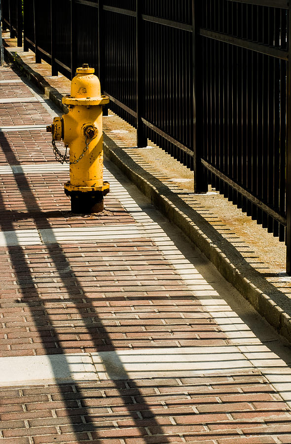 Waiting Room Photograph - Yellow Fire Hydrant - Pittsfield - Massachusetts by David Smith