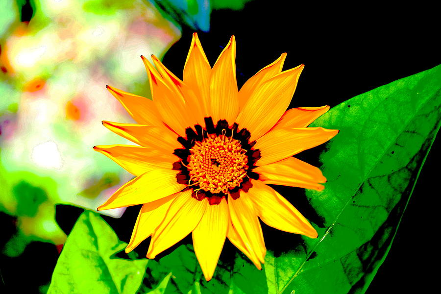 Flower Photograph - Yellow Flower by Carolyn Reinhart