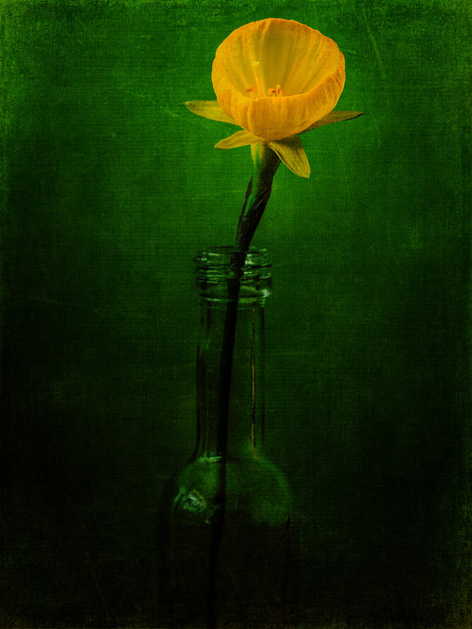 Yellow Flower In A Bottle I Photograph