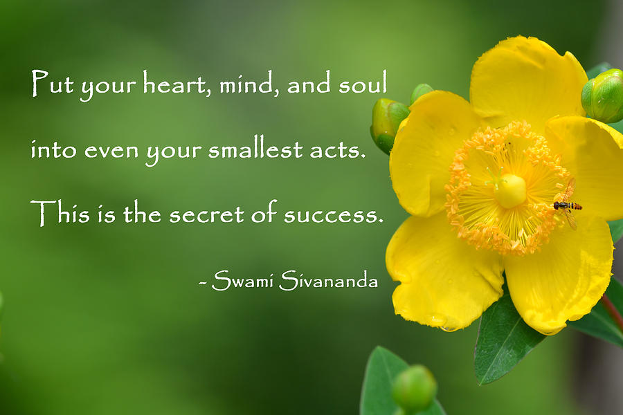 Yellow Flower With Success Quote Photograph By Beth Sawickie