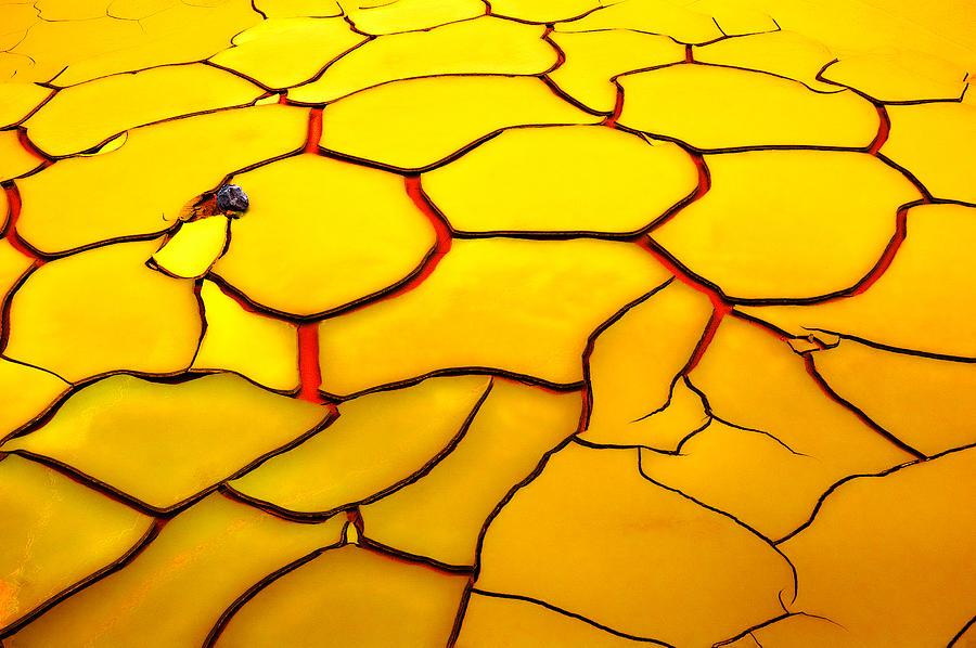 Yellow Photograph - Yellow Ground, Red Heart by E. De Juan